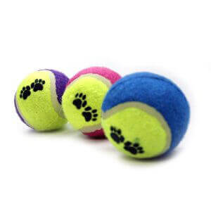 Colured Pet Tennis Balls